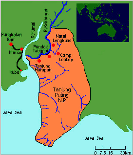 tanjung-puting-map