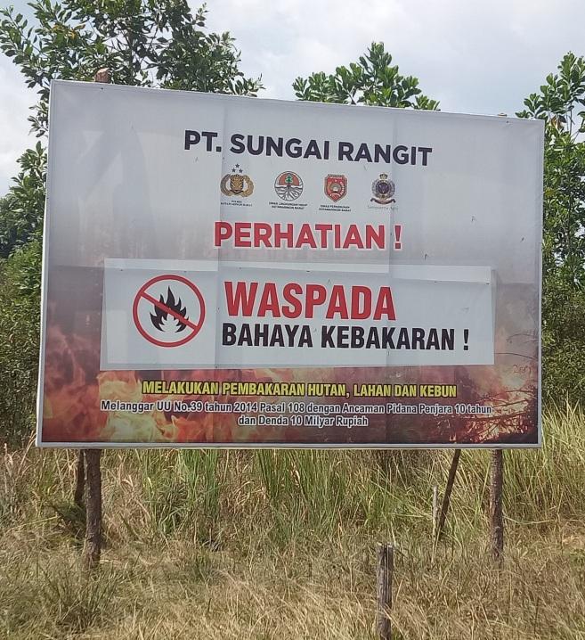 Sanksi Membakar Hutan dan Lahan
